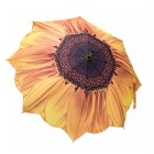 Sunflower Bloom Umbrella
